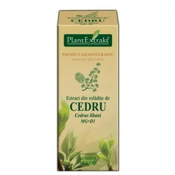 Extract din mladite de cedru - cedrus libani mg=d1 50 ml PLANTEXTRAKT