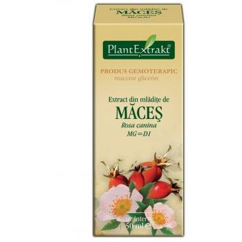 Extract din mladite de maces - rosa canina mg=d1 50 ml PLANTEXTRAKT