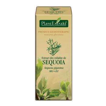 Extract din mladite de sequoia - sequoia gigantea mg=d1 50 ml PLANTEXTRAKT