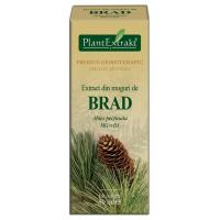 Extract din muguri de brad - abies pectinata mg=d1