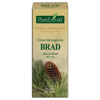 Extract din muguri de brad - abies pectinata mg=d1 50 ml PLANTEXTRAKT