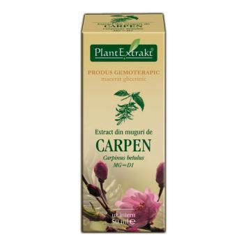 Extract din muguri de carpen - carpinus betulus mg=d1 50 ml PLANTEXTRAKT