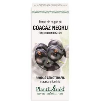 Extract din muguri de coacaz negru - ribes nigrum mg=d1 50 ml PLANTEXTRAKT