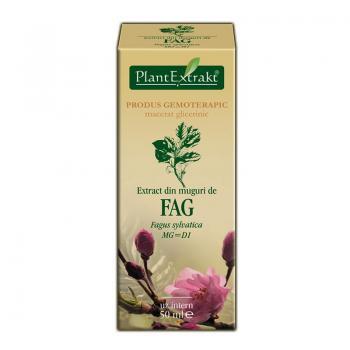 Extract din muguri de fag - fagus sylvatica mg=d1 50 ml PLANTEXTRAKT