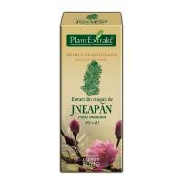 Extract din muguri de jneapan - pinus montana mg=d1