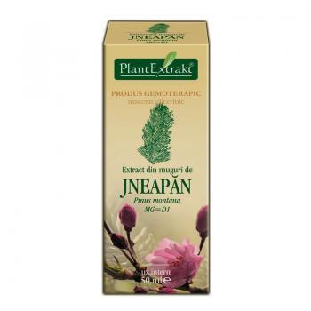 Extract din muguri de jneapan - pinus montana mg=d1 50 ml PLANTEXTRAKT
