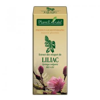 Extract din muguri de liliac - syringa vulgaris mg=d1 50 ml PLANTEXTRAKT