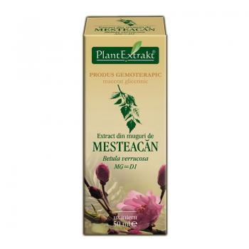 Extract din muguri de mesteacan - betula verrucosa mg=d1 50 ml PLANTEXTRAKT