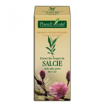 Extract din muguri de salcie - salix alba gemme mg=d1 50 ml PLANTEXTRAKT