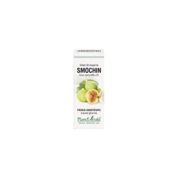Extract din muguri de smochin - ficus carica mg=d1 50 ml PLANTEXTRAKT