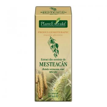 Extract din seminte de mesteacan - betula verrucosa semi mg=d1 50 ml PLANTEXTRAKT