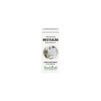 Extract din seva de mesteacan - betula linfa mg=d1 50 ml PLANTEXTRAKT