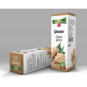 Extract gliceric de ghimbir 50 ml ADNATURA