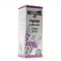 Extract gliceric de pufulita cu flori mici