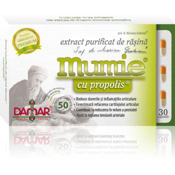 Extract purificat de rasina mumie cu propolis-capsule 30 cps DAMAR