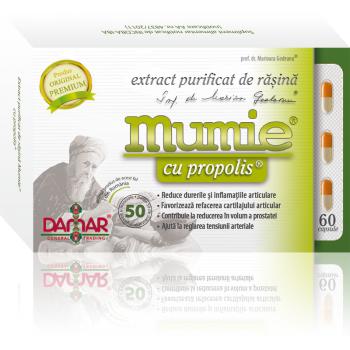 Extract purificat de rasina mumie cu propolis-capsule 60 cps DAMAR