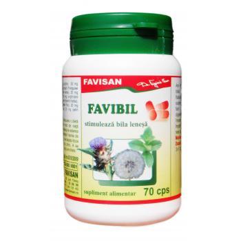 Favibil b101 70 cps FAVISAN