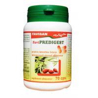 Favipredigest b113