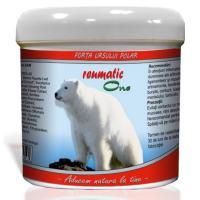 Forta ursului polar