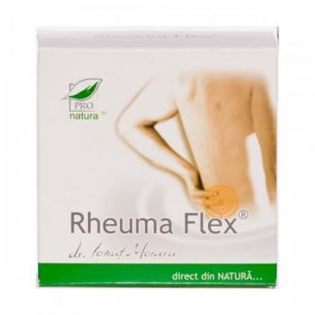 Gel rheuma flex 125 ml PRO NATURA