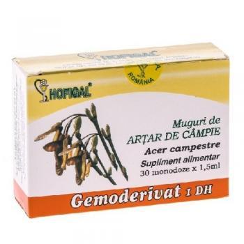 Gemoderivat din muguri de artar de campie - monodoze 30 ml HOFIGAL