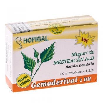Gemoderivat din muguri de mesteacan alb - monodoze 30 ml HOFIGAL