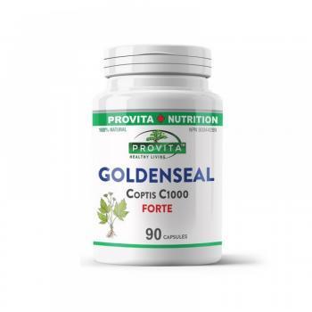 Goldenseal Coptis C1000 Forte 90 cps PROVITA