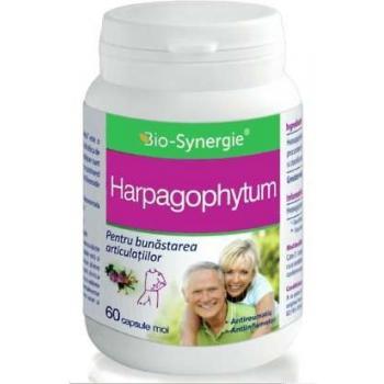 Harphagophytum 60 cps BIO-SYNERGIE