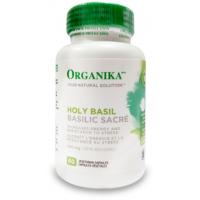 Holy basil busuioc sfant  500 mg
