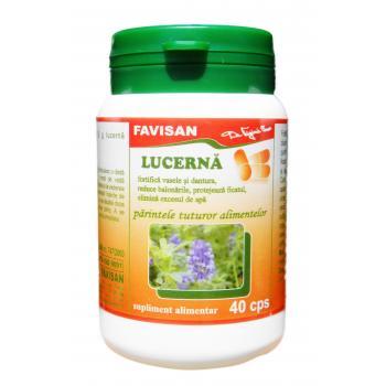 Lucerna b021 40 cps FAVISAN
