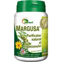 Margusa