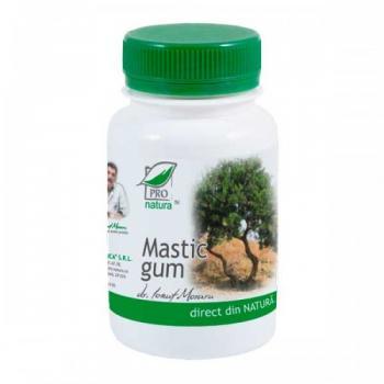 Mastic gum 60 cps PRO NATURA