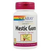 Mastic gum 45cps SOLARAY