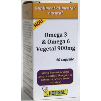 Omega 3 & omega 6 vegetal 900 mg 40 cps HOFIGAL