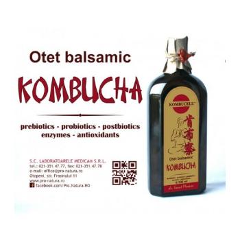 Otet balsamic de kombucha 250 ml PRO NATURA