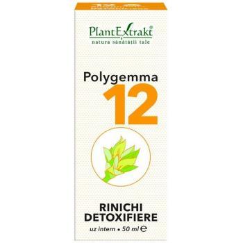 Polygemma 12 - rinichi detoxifiere 50 ml PLANTEXTRAKT