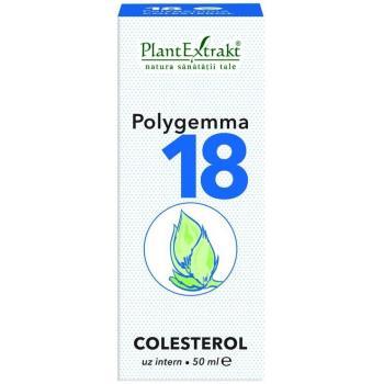 Polygemma 18 - colesterol 50 ml PLANTEXTRAKT