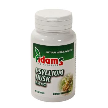 Psyllium husk 60 cps ADAMS SUPPLEMENTS