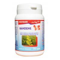 Sanziene b103