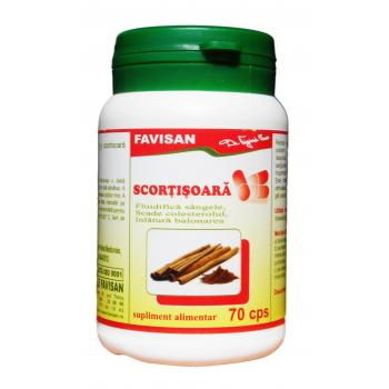 Scortisoara b110 70 cps FAVISAN