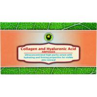 Set colagen&acid hyaluronic 12 x 10 ml