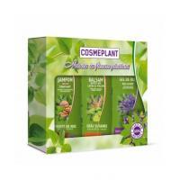 Set nr.1-cosmeplant ingrijire par si corp cu extract de frunze de nuc si lavanda