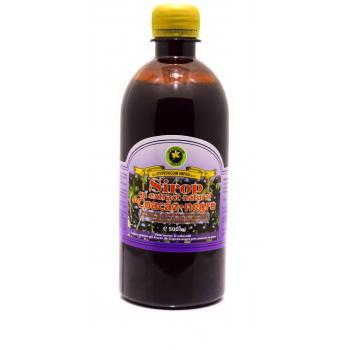 Sirop cu extract natural de coacaz negru 500 ml HYPERICUM