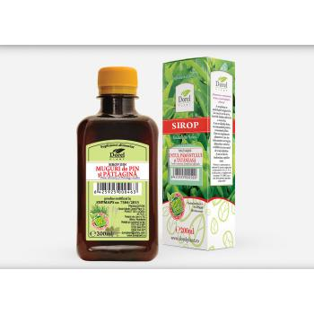 Sirop de pin si patlagina 200 ml DOREL PLANT