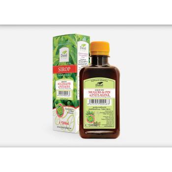 Sirop din muguri de pin si patlagina 500 ml DOREL PLANT