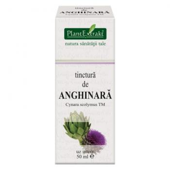 Tinctura de anghinara - cynara scolymus tm 50 ml PLANTEXTRAKT