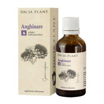 Tinctura de anghinare 50 ml DACIA PLANT