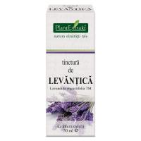 Tinctura de levantica- lavandula angustifolia tm