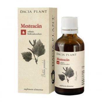 Tinctura de mesteacan 50 ml DACIA PLANT