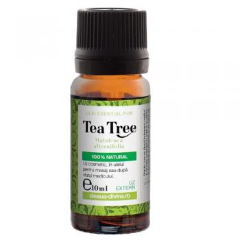 Ulei esential de tea tree 10 ml STEAUA DIVINA
